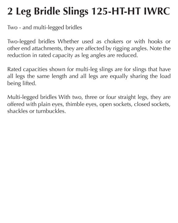2 Leg Bridle Slings 125 HT-HT IWRC - Carter Lifting®